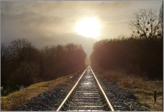 Ligne classique JLTL